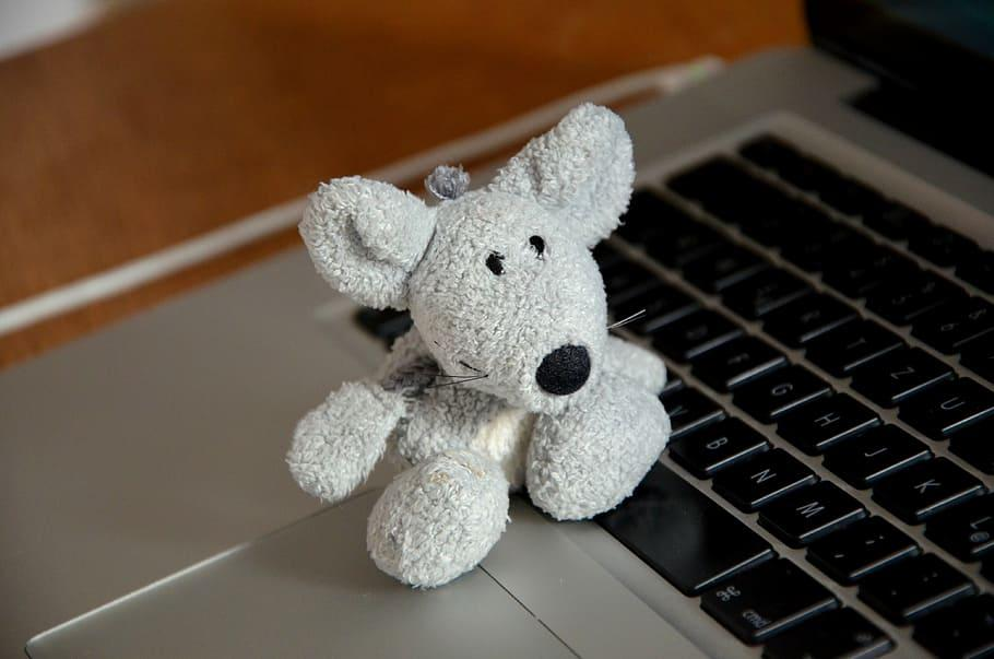 plush toy using computer